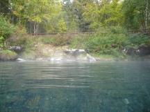 hot springs 011 Liard, Hot Springs, BC
