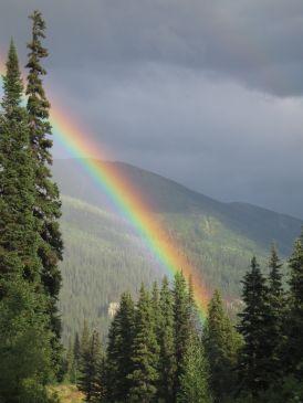 img_0026 Rainbow, Pine Pass, BC