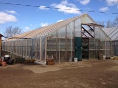 IMG_0071 Norbet's Greenhouses Rose Prairie, BC