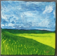 "Beautiful BC Canola (6x6"")"