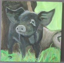 """The Little Pig 12x12"""" Acrylic"""